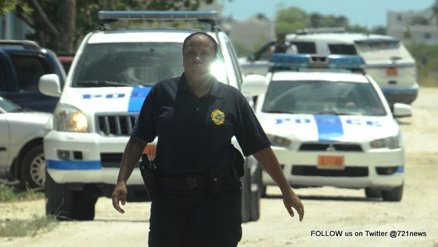 zoo cop chase (1)