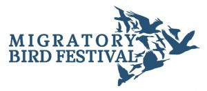 Migratory-Bird-Festival-Logo