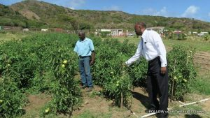 His Excellency Governor Eugene B. Holiday paid a working visit to St. Eustatius (2)-001